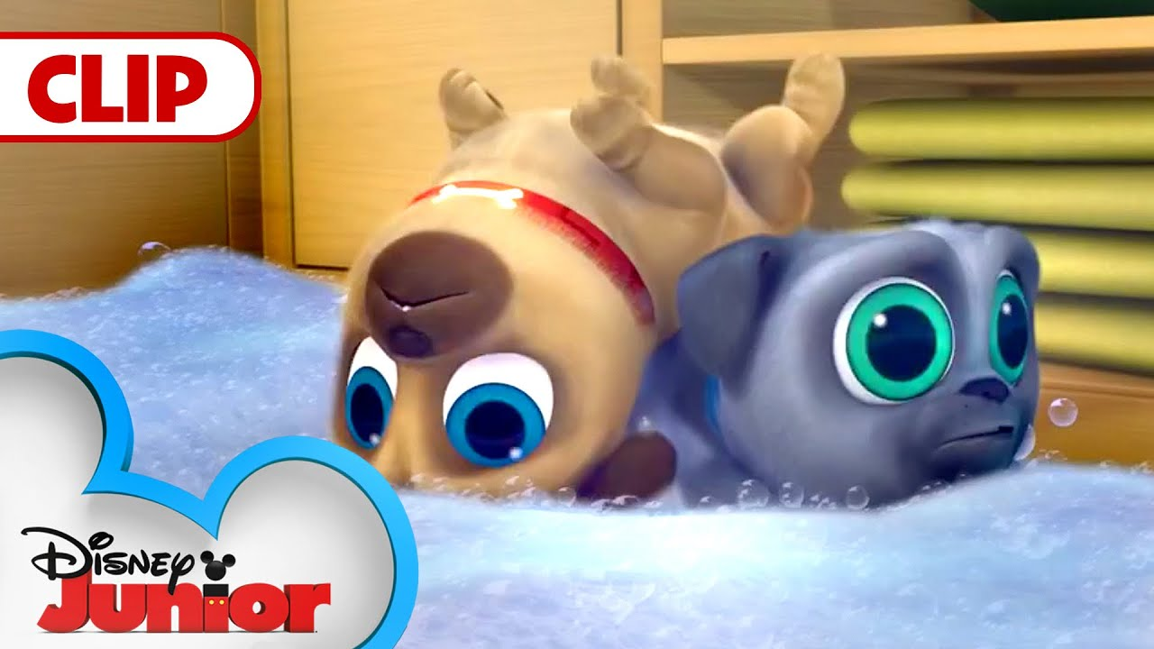 Cleanin Pup Puppy Dog Pals Disney Junior Youtube