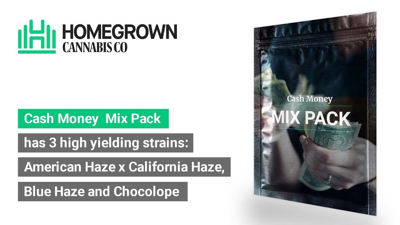 Cash Money Mix Pack