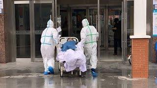 Почти тысяча зараженных за сутки, вылечился 51 человек. Коронавирус в России