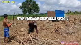 Gambar cover Story Wa Terbaru - Fauzan Sapi 2019