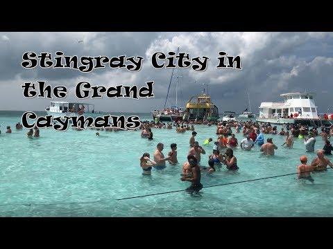 Grand Cayman Islands Stingray City Tour