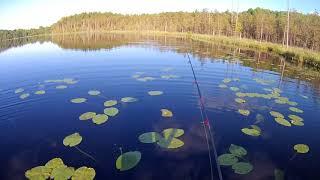 Рыбалка в Карелии.Так ли всё сказочно и сладко Ч.2