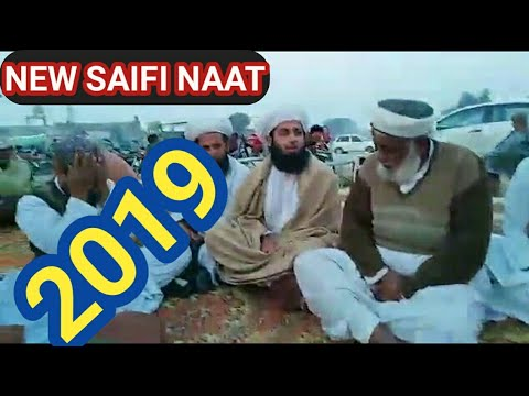 NEW SAIFI NAAT || SAIFI NAAT || Beautiful naat 2019