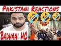 Pakistani Reacts Badhaai Ho Official Trailer | Ayushmann Khurrana, Sanya Malhotra | Amit Sharma