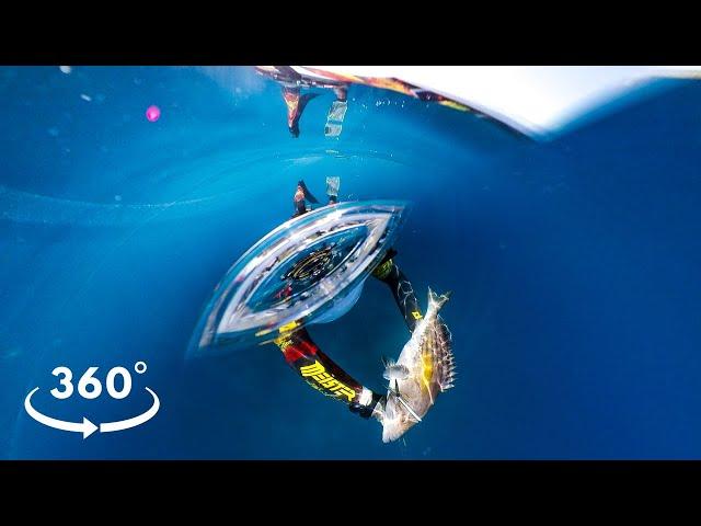 360° VR Experience Underwater - The Ambush |Spearfishing Life 🇬🇷