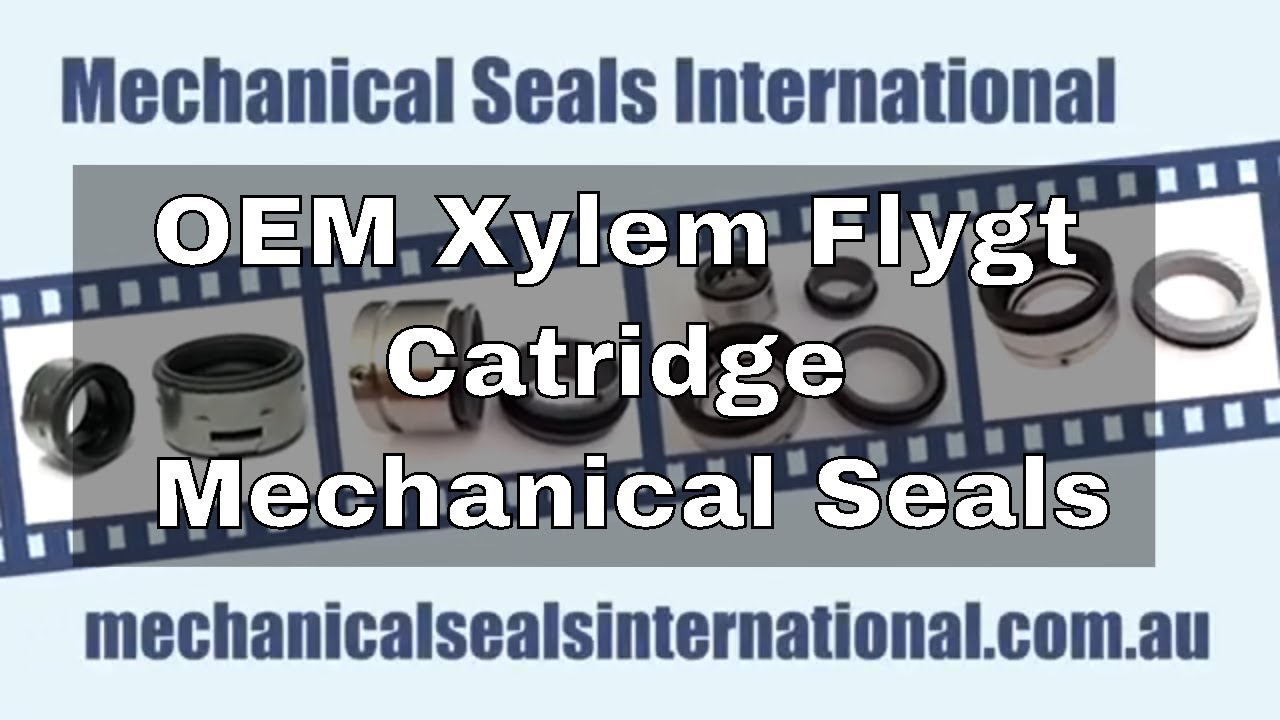 Mechanical Seals Home