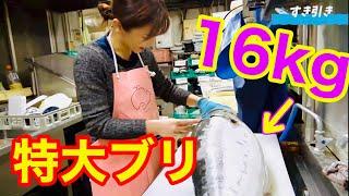 【16kg】春が旬のおっきな桜ぶり!握りにして贅沢にいただきます!!!〈ご報告も❤️〉