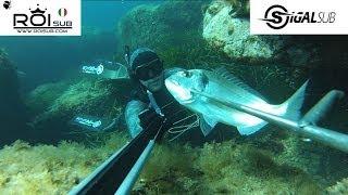Chasse sous marine en Corse -- Marc Breysse La Chasse a trou les 15 premiers mètres Roisub Sigalsub