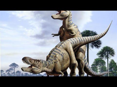 Como se apareaban los dinosaurios youtube - Como se aparean los elefantes ...