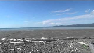 Вл Мельников Полярні кити Охотського моря