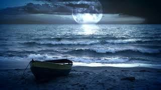 Скачать футаж лунная ночь на море для видеомонтажа hd 1080 3d