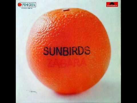 Sunbirds - Ocean Song