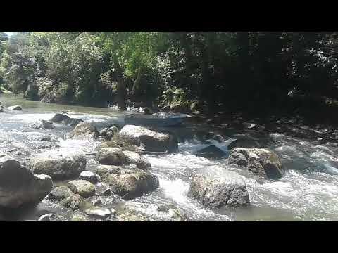 Ross downstream