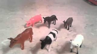 Набор из 6 фигурок домашних животных Играем вместе в ассорт.