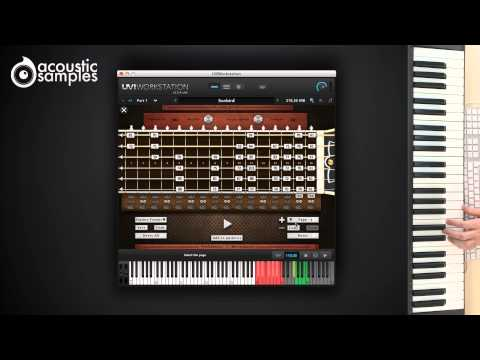 Sunbird Guitar library by Acousticsamples - Patterns