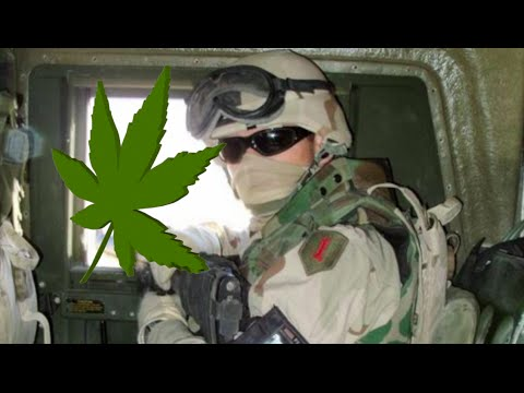 PTSD and Cannabis for Veterans