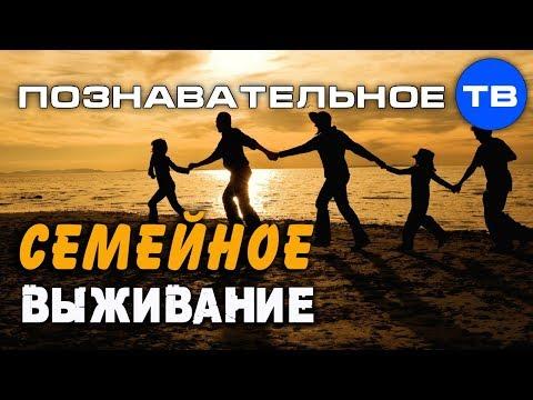 Русское семейное выживание. Почему погибает семья? (Познавательное ТВ, Андрей Иванов)