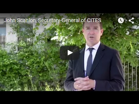 What is the objective of CITES?