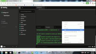 Hướng dẫn đâm VPS koding