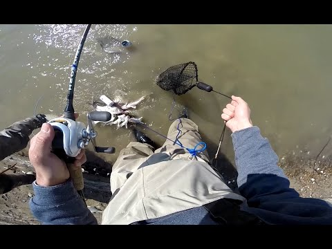 White Bass fishing 02-13-2015 (Lock N Dam) GoPro Hero3+ 720p HD