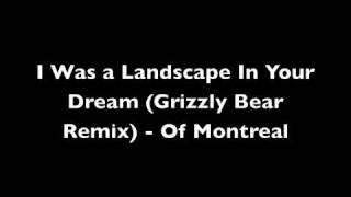 I Was a Landscape In Your Dream (Grizzly Bears Remix)