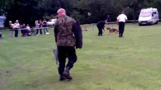 Police Dog Ary
