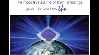 Hydrofera Blue Ready Border Presentation