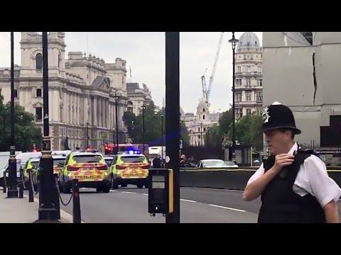 فرانس 24:Pedestrians hurt as car hits barrier at UK parliament, man arrested