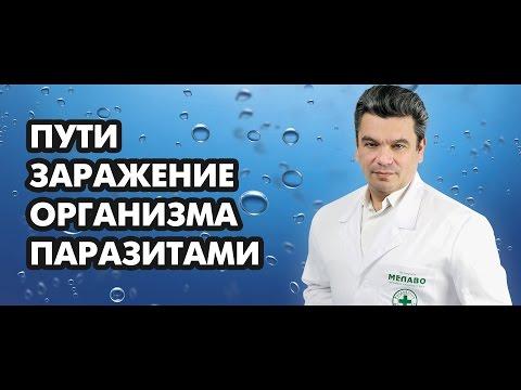 Пути заражение организма паразитами. Доктор, диетолог блогер Борис Скачко