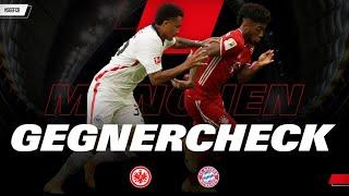 So kann die Eintracht den Rekordmeister ärgern I Gegnercheck Frankfurt - Bayern München