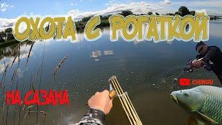 Удачная охота на Сазана в мутной воде Slingshot Fishing 2021