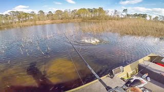 Bed Fishing For Bass In Shallow Clear Water || 50 State Fishing Tour (TX Day II)