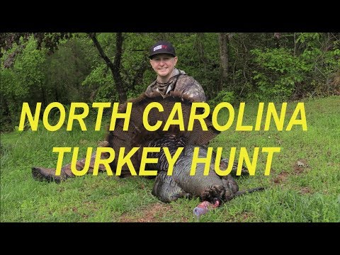 Turkey Hunting: Tagged Out