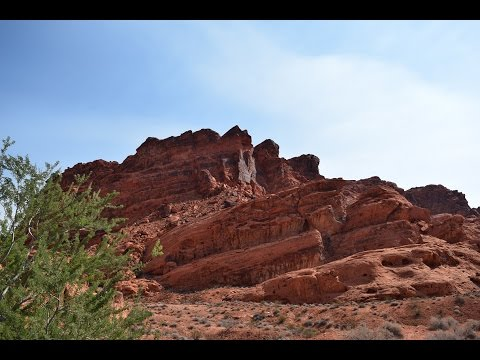 Police, Drones, And Iguanas! All At Valley Of Fire State Park, Nevada