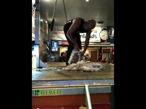 David Fagan, Worlds Fastest Speed Shear! 14.06sec
