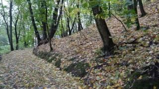 Золотая осень . Канев .(, 2016-10-14T19:33:01.000Z)