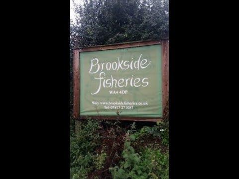 Brookside Fishery Walk Around.