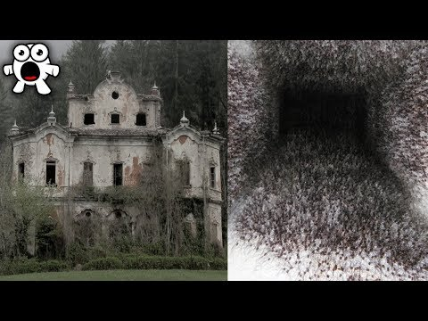 T-Bone - 10 Creepiest Houses You Would Never Enter