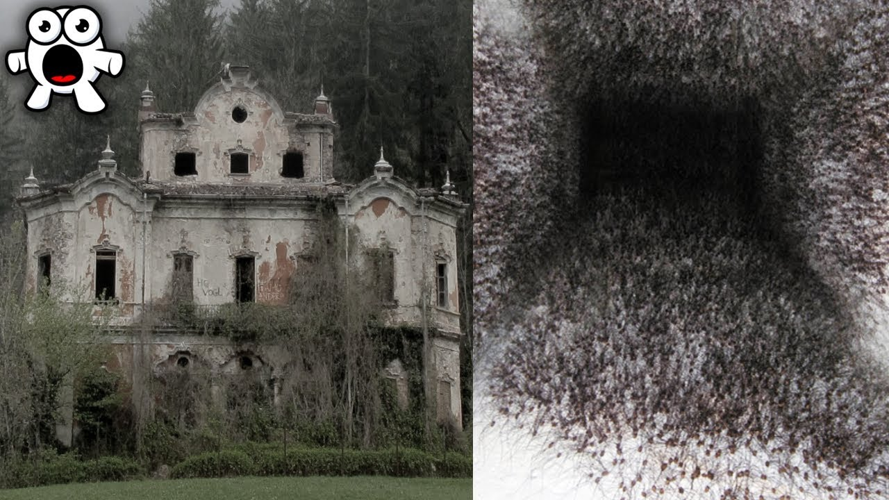 Top 10 Creepiest Houses You'd Never Enter Even If You Were Paid