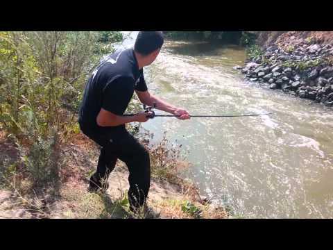River Monster Yolo County Deadliest Catch