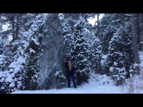 Winter holidays 2016 - Finland,Helsinki,Espoo