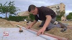Sainte Gemme la Plaine : les meilleurs paysagistes de la région à Pétré