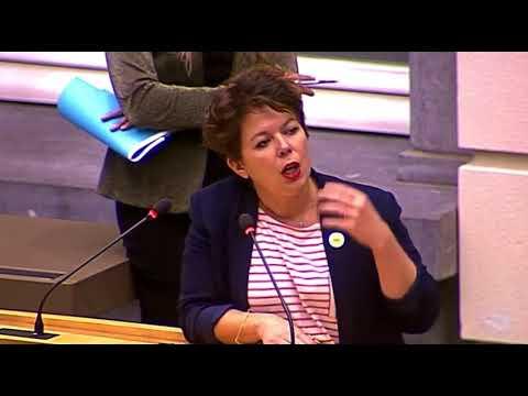 Vlaams Parlement - plenaire vergadering 22/11