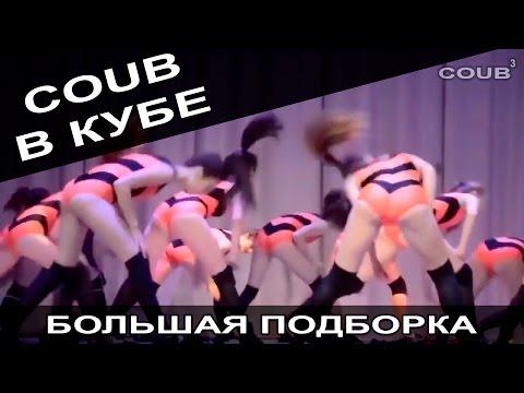Большая подборка приколов COUB за февраль 2016. COUB В КУБЕ! - видео онлайн