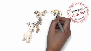 Нарисованные карандашом собаки  Как нарисовать семью собак