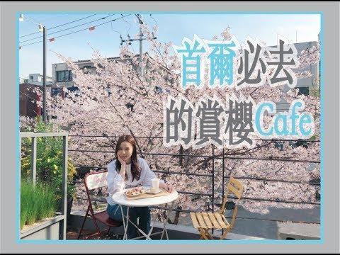 首爾必去的賞櫻Cafe - YouTube