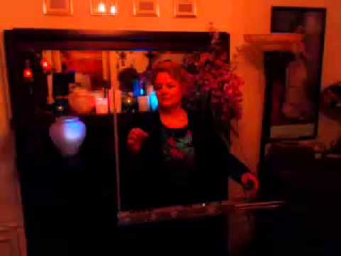 Sarah Rice - Theremin - Concert Window Highlight
