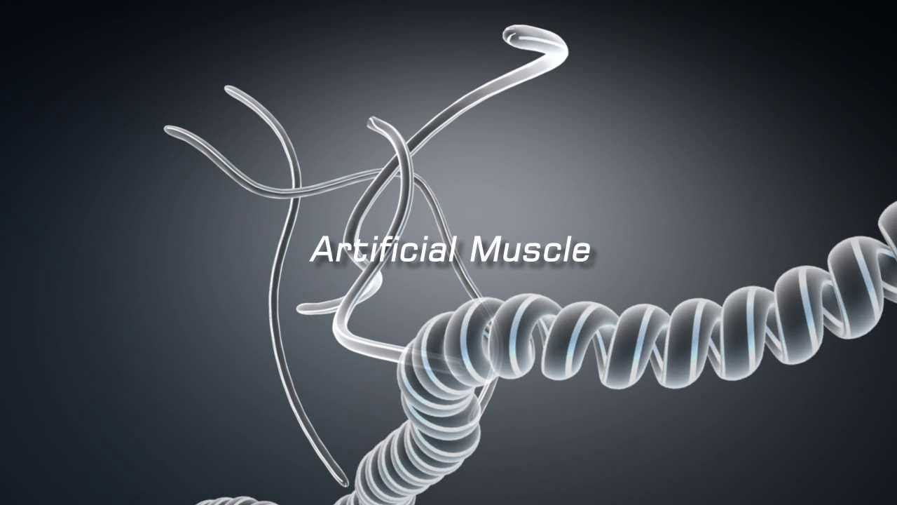 Artificial Muscles From Cheap Polymer Fibers? |