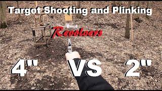 Target Shooting and Plinking 4