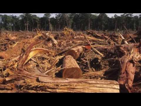 Environmental Issues in Panama (genius hour)
